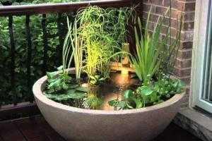 Эимний сад на балконе. Мини фонтан.